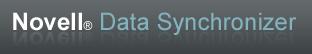 datasynchronizer